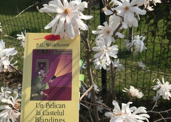 Book review A Pelican at Blandings