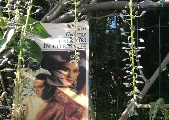 Calatori in eternitate Karl Gjellerup Book review Bookblog