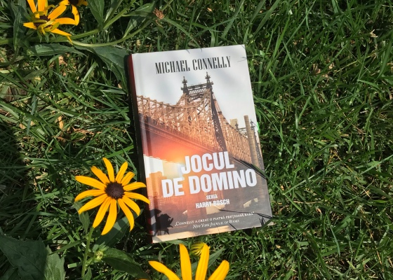The Crossing Michael Connelly Book review