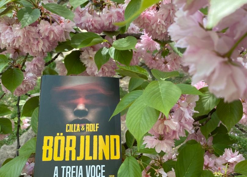The third voice Book review Thriller Cilla Borjlind